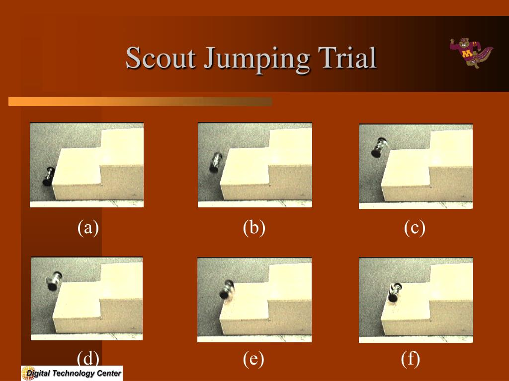 Scout Jumping Trial