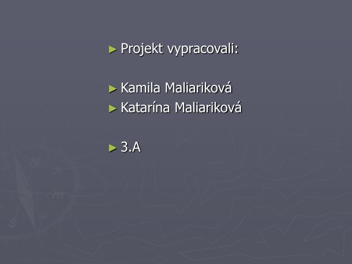 Projekt v