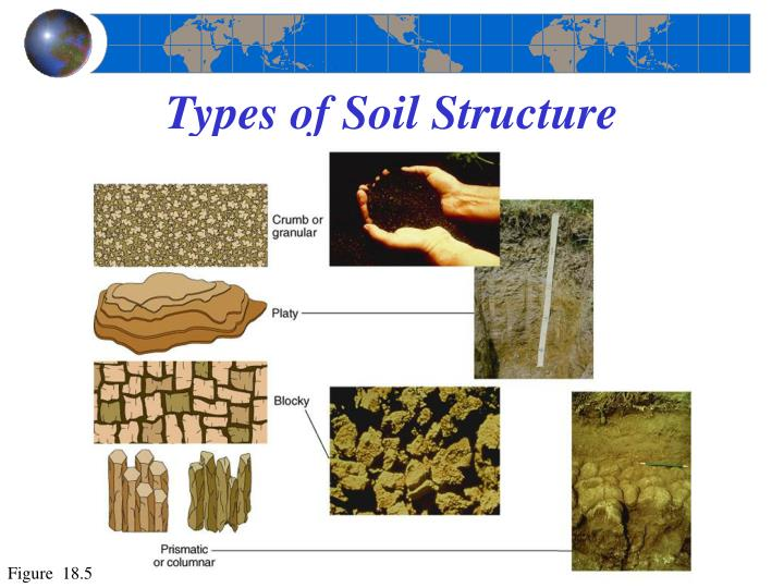 types of soil Soil types many natural bodies, such as plants and animals, are discrete entities which can be classified and guidelines for their identification.
