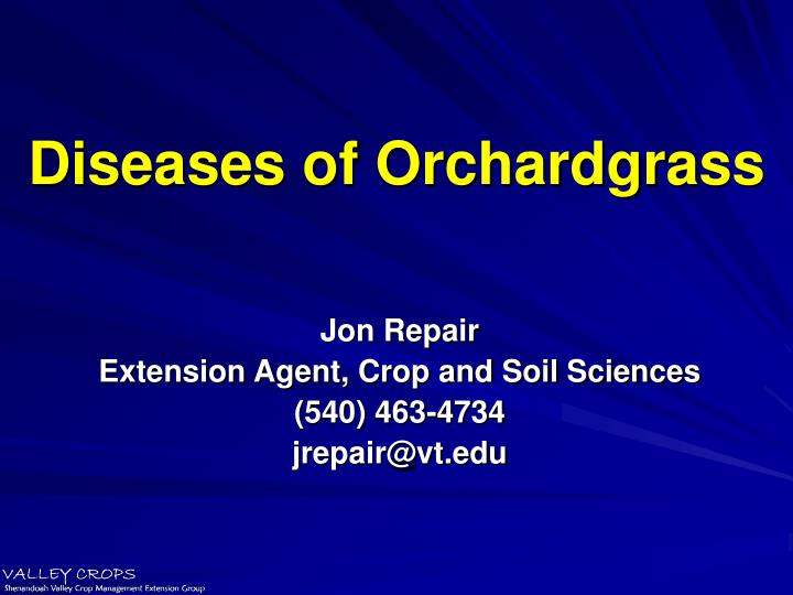 diseases of orchardgrass n.