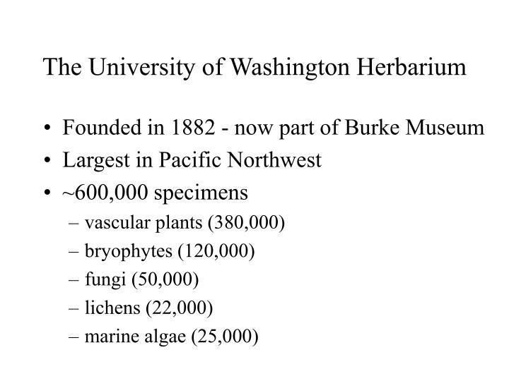 The University of Washington Herbarium