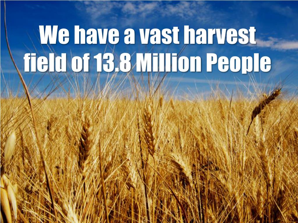 We have a vast harvest field of