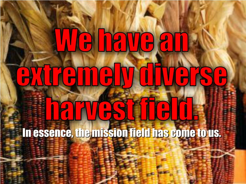 We have an extremely diverse harvest field.
