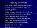 planting date rate