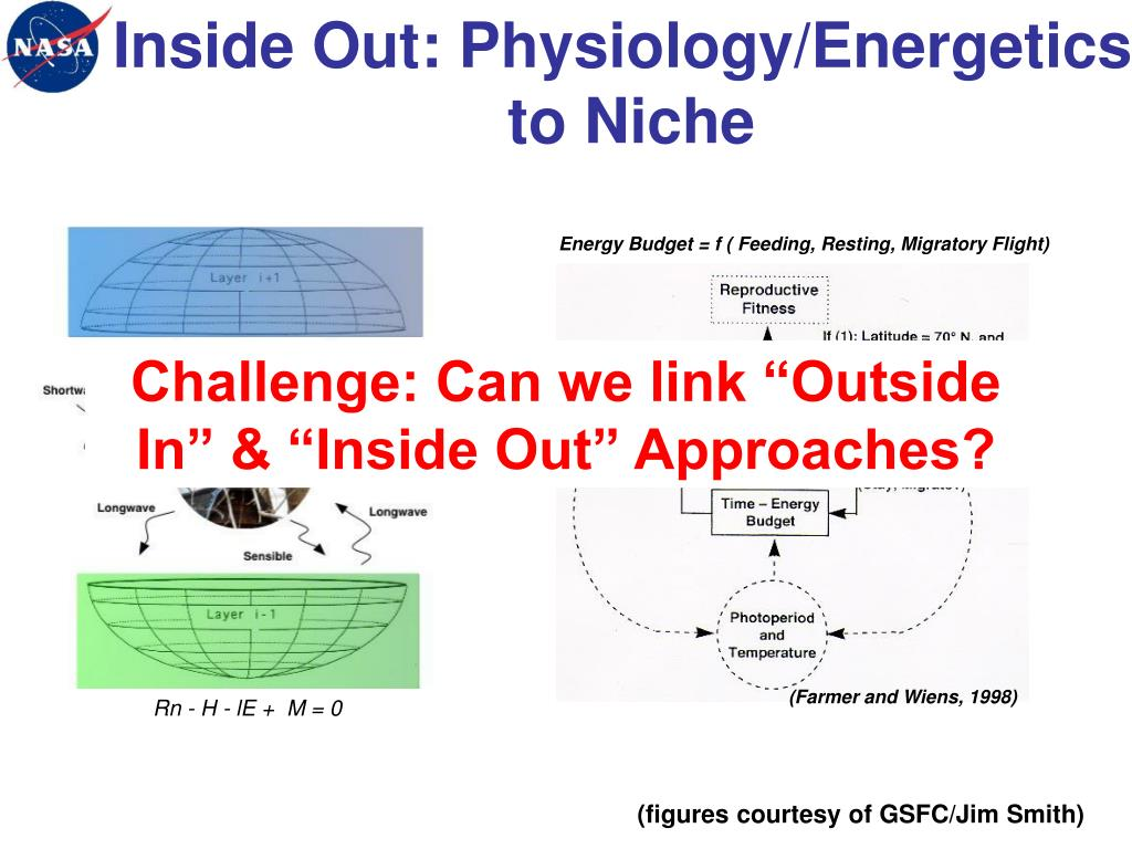 Inside Out: Physiology/Energetics
