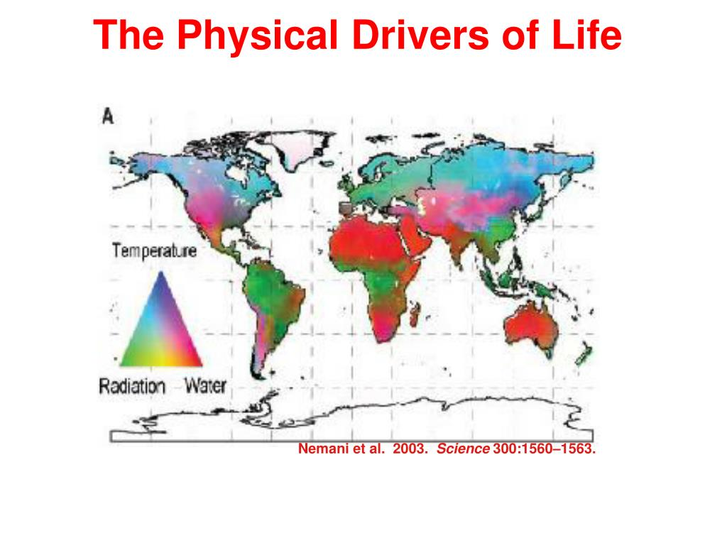 The Physical Drivers of Life