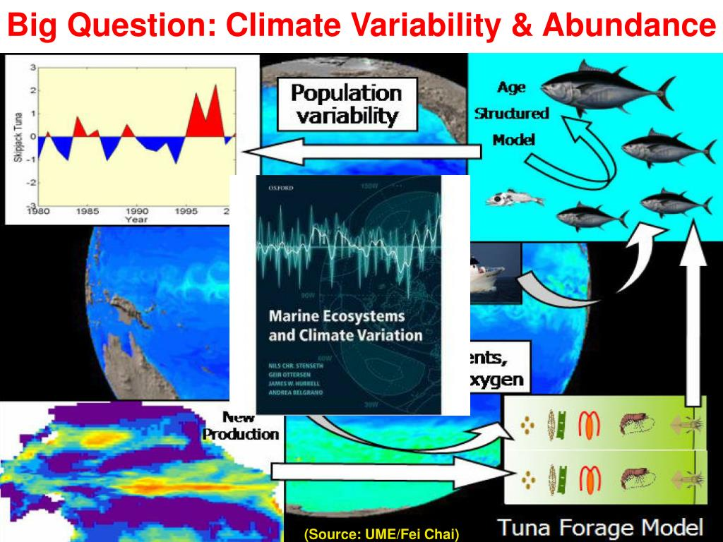 Big Question: Climate Variability & Abundance