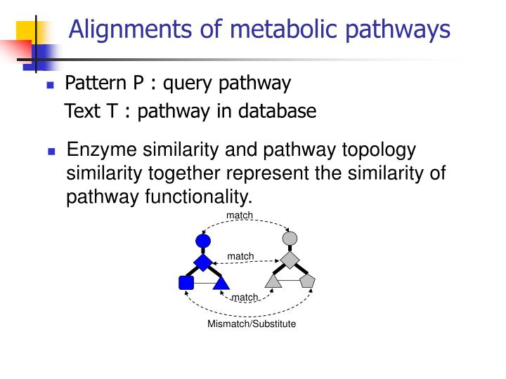 Alignments of metabolic pathways