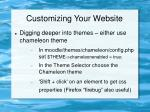 customizing your website34
