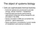 the object of systems biology