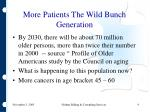 more patients the wild bunch generation