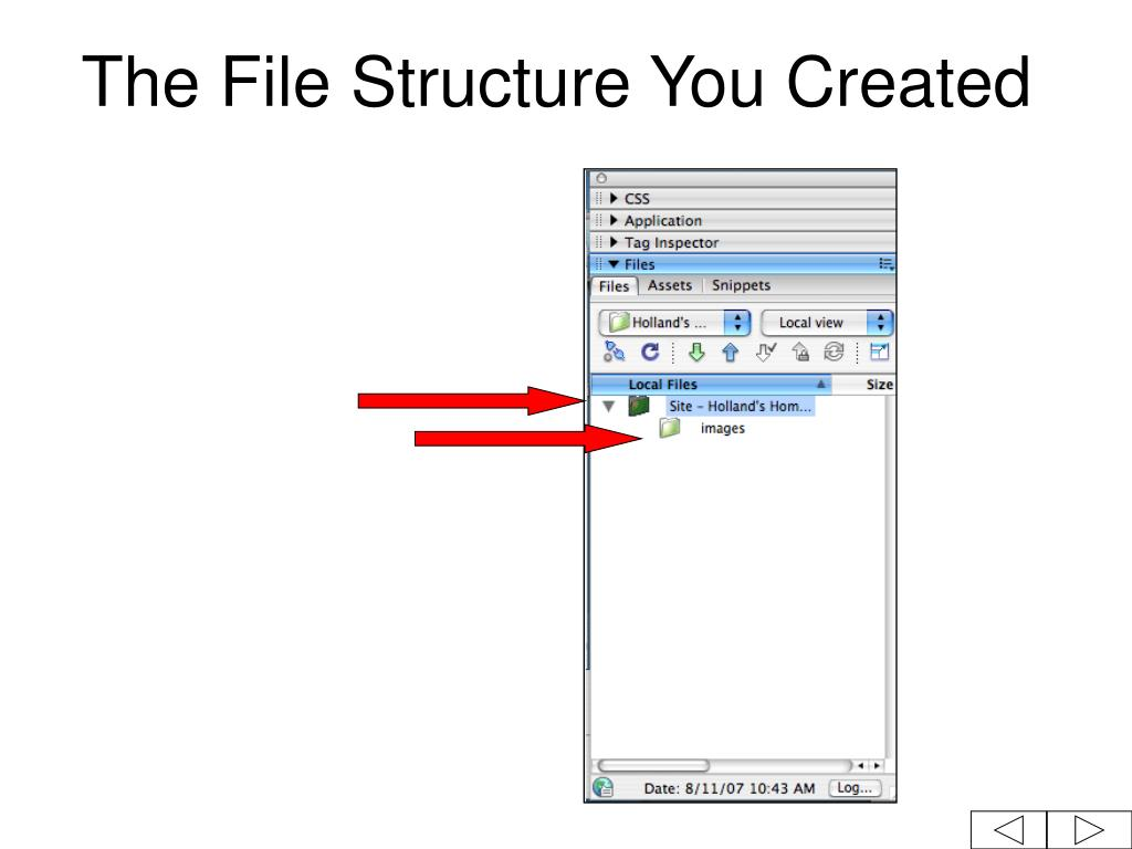 The File Structure You Created