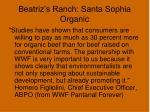 beatriz s ranch santa sophia organic17