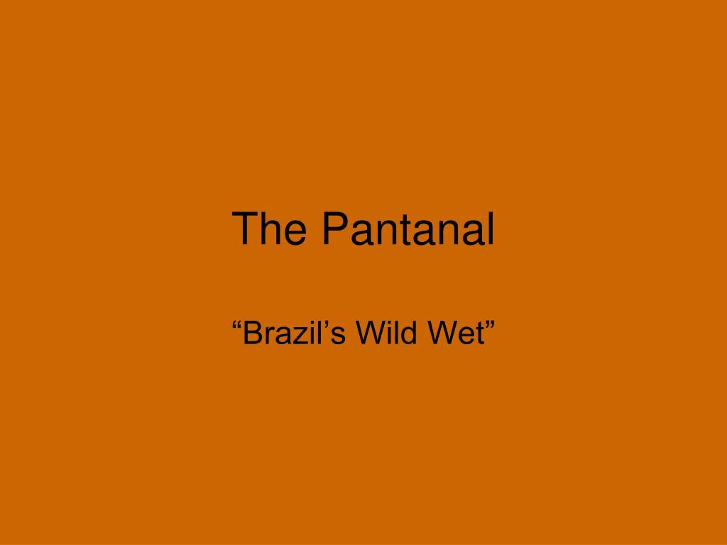 the pantanal l.