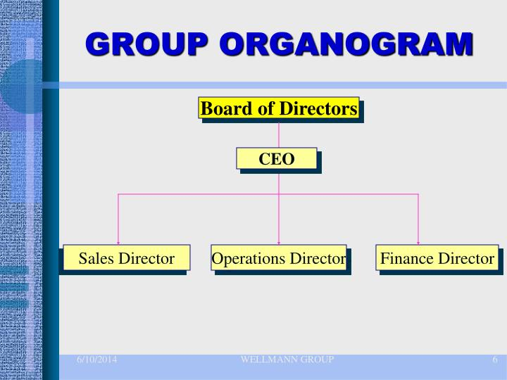 GROUP ORGANOGRAM