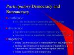 participatory democracy and bureaucracy15