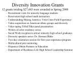 diversity innovation grants