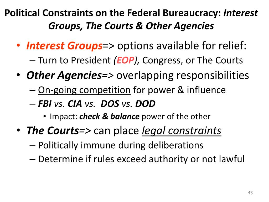 Political Constraints on the Federal Bureaucracy: