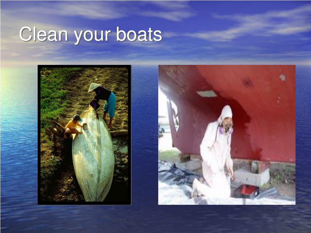 Clean your boats