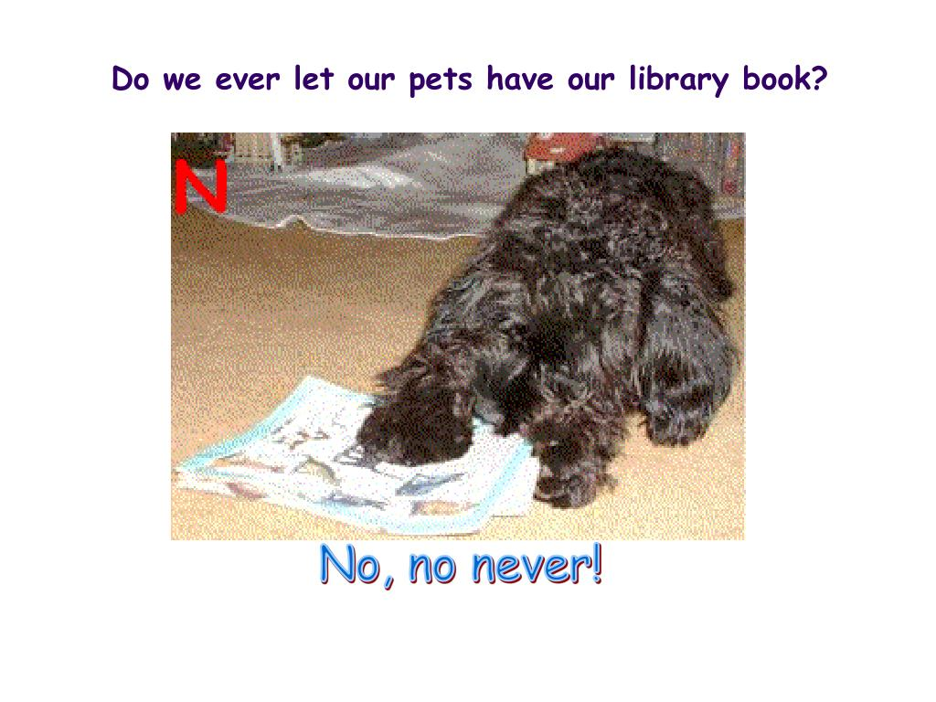 Do we ever let our pets have our library book?