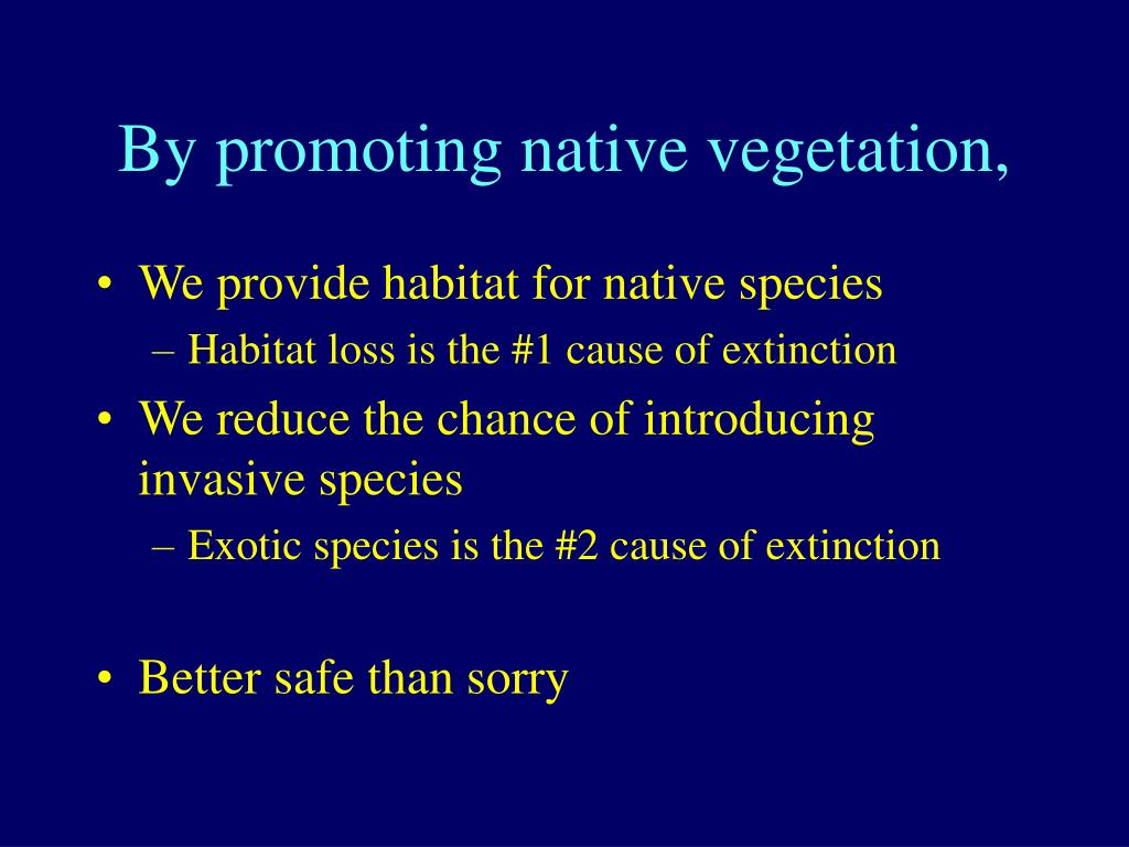 By promoting native vegetation,