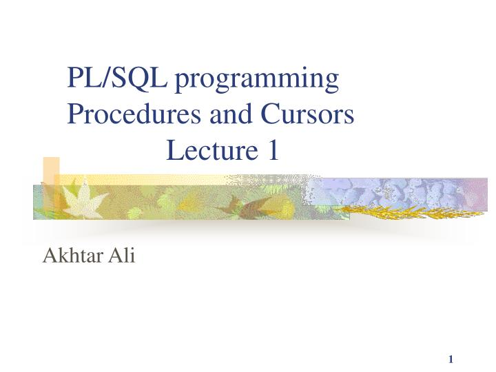 pl sql programming procedures and cursors lecture 1 n.