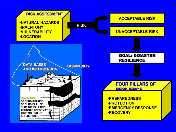 FOUR PILLARS OF RESILIENCE