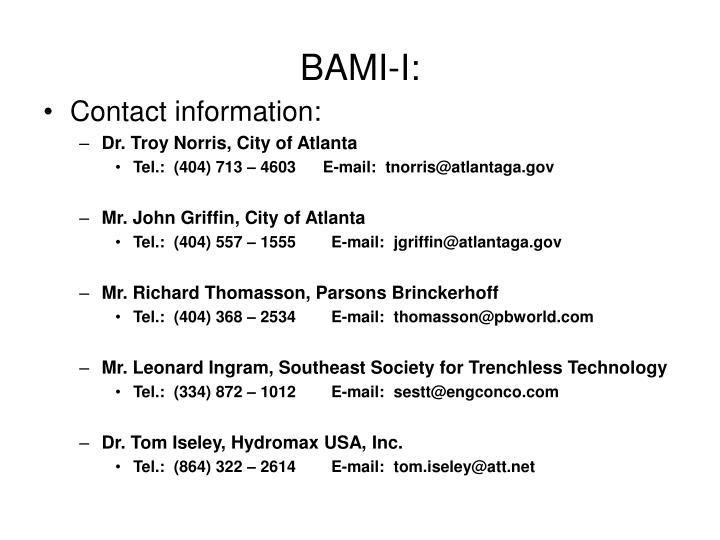 BAMI-I: