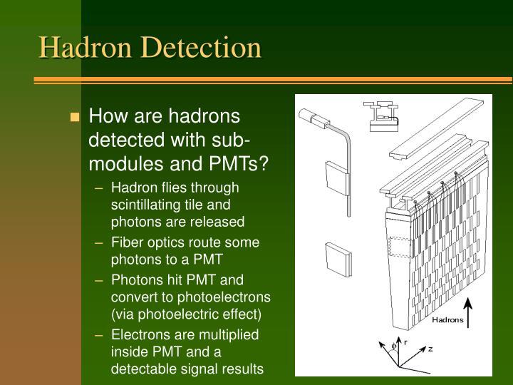 Hadron Detection