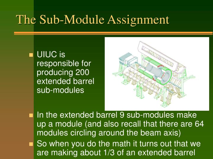 The Sub-Module Assignment