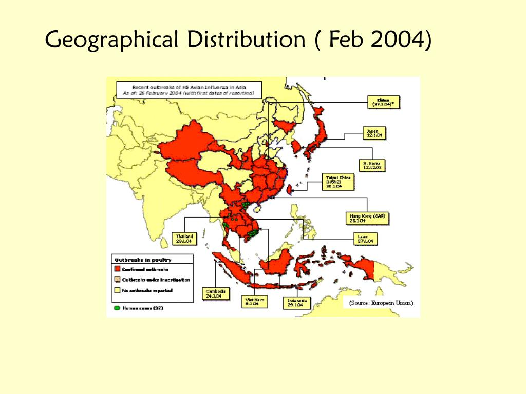 Geographical Distribution ( Feb 2004)