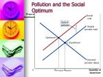 pollution and the social optimum