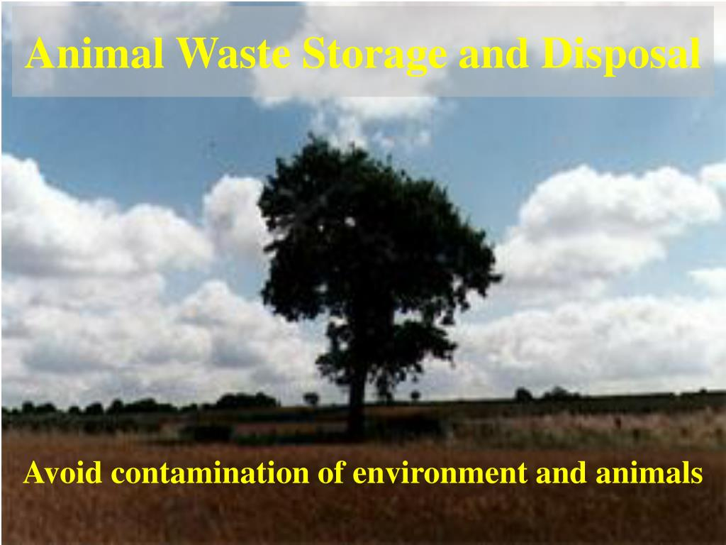 Animal Waste Storage and Disposal