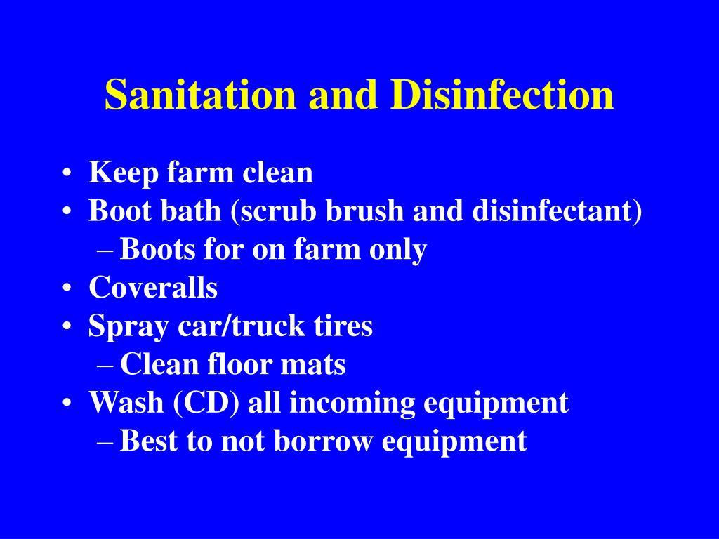 Sanitation and Disinfection