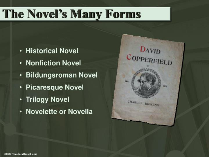 The Novel's Many Forms