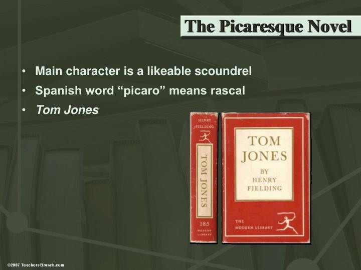 The Picaresque Novel