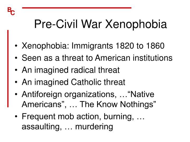 Pre-Civil War Xenophobia