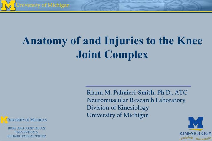Anatomy of and Injuries to the Knee Joint Complex