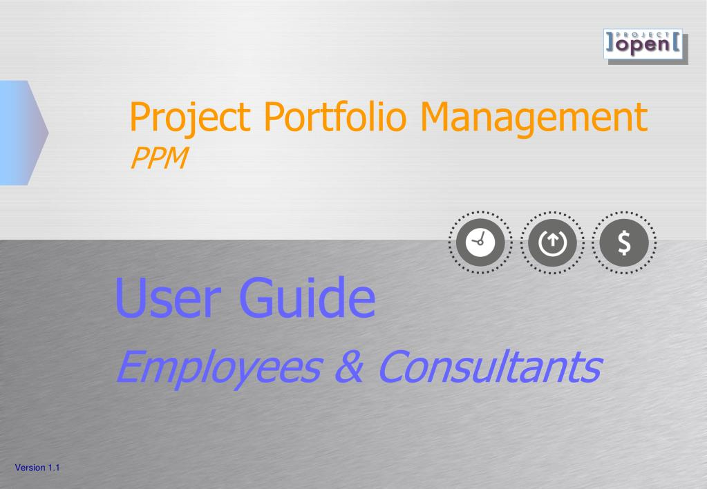 project portfolio management ppm l.