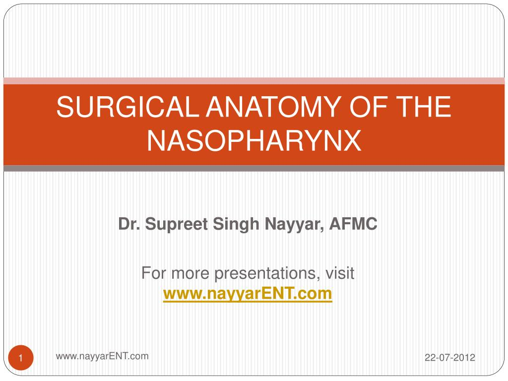 Ppt Surgical Anatomy Of The Nasopharynx Powerpoint Presentation