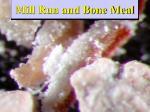 mill run and bone meal