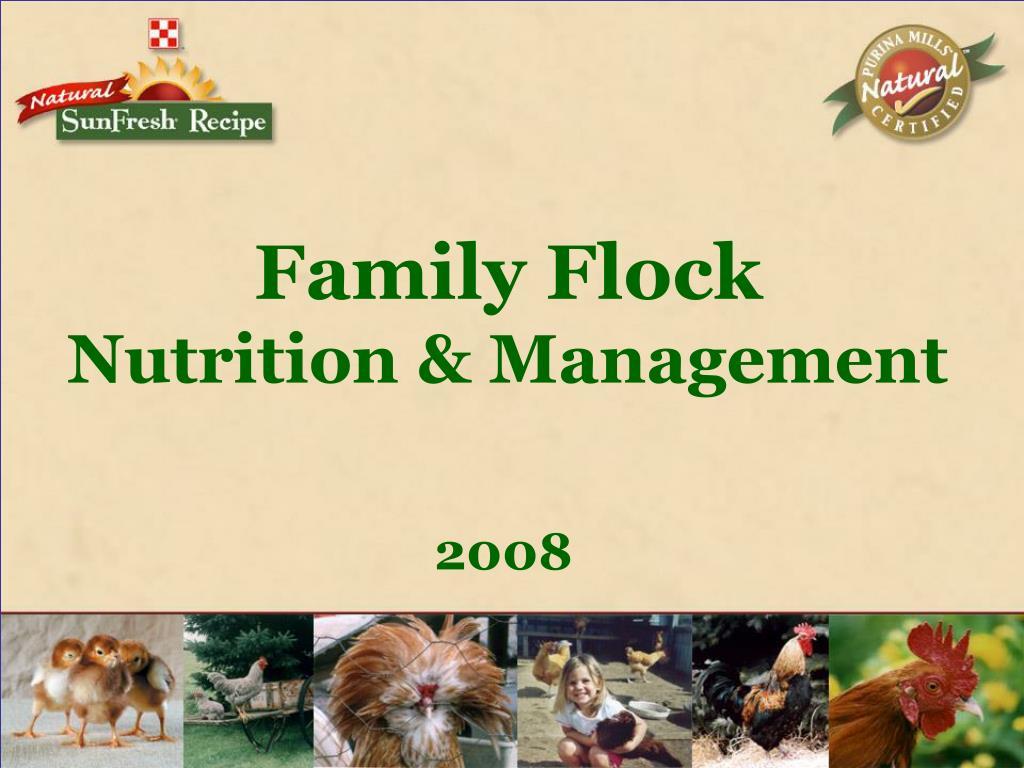 family flock nutrition management l.