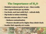 the importance of h 2 o