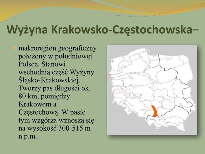 Wy yna krakowsko cz stochowska