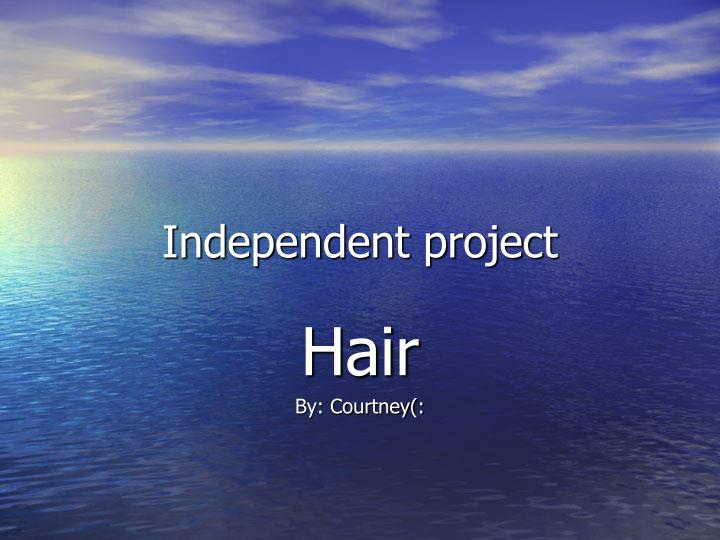 independent project n.
