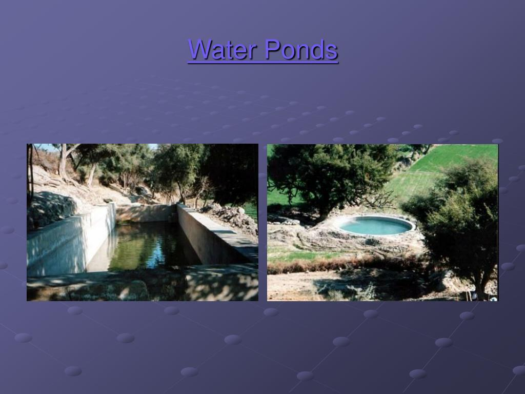 Water Ponds