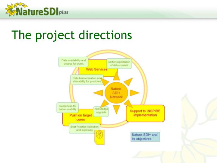 The project directions