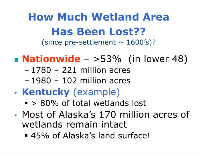 How Much Wetland Area
