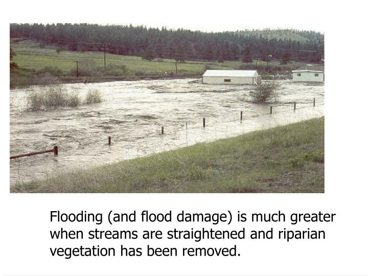 Flooding (and flood damage) is much greater