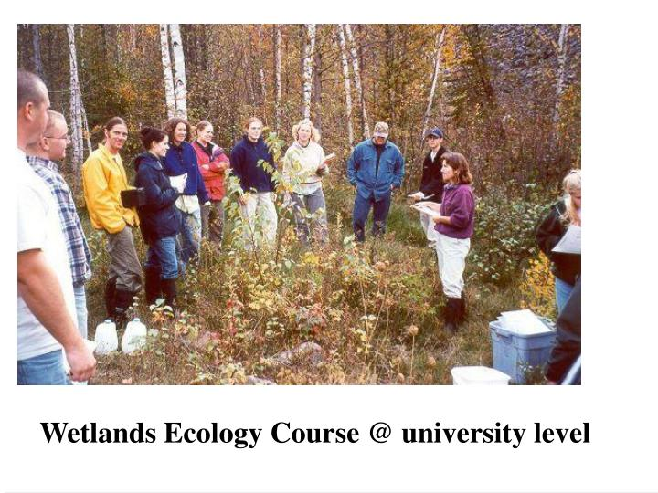 Wetlands Ecology Course @ university level